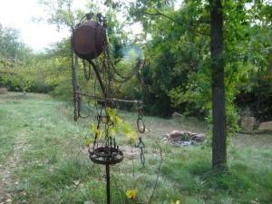 Sorcière de la vigne - automne