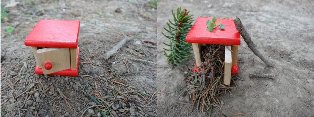 Waldboden - aufgeräumt